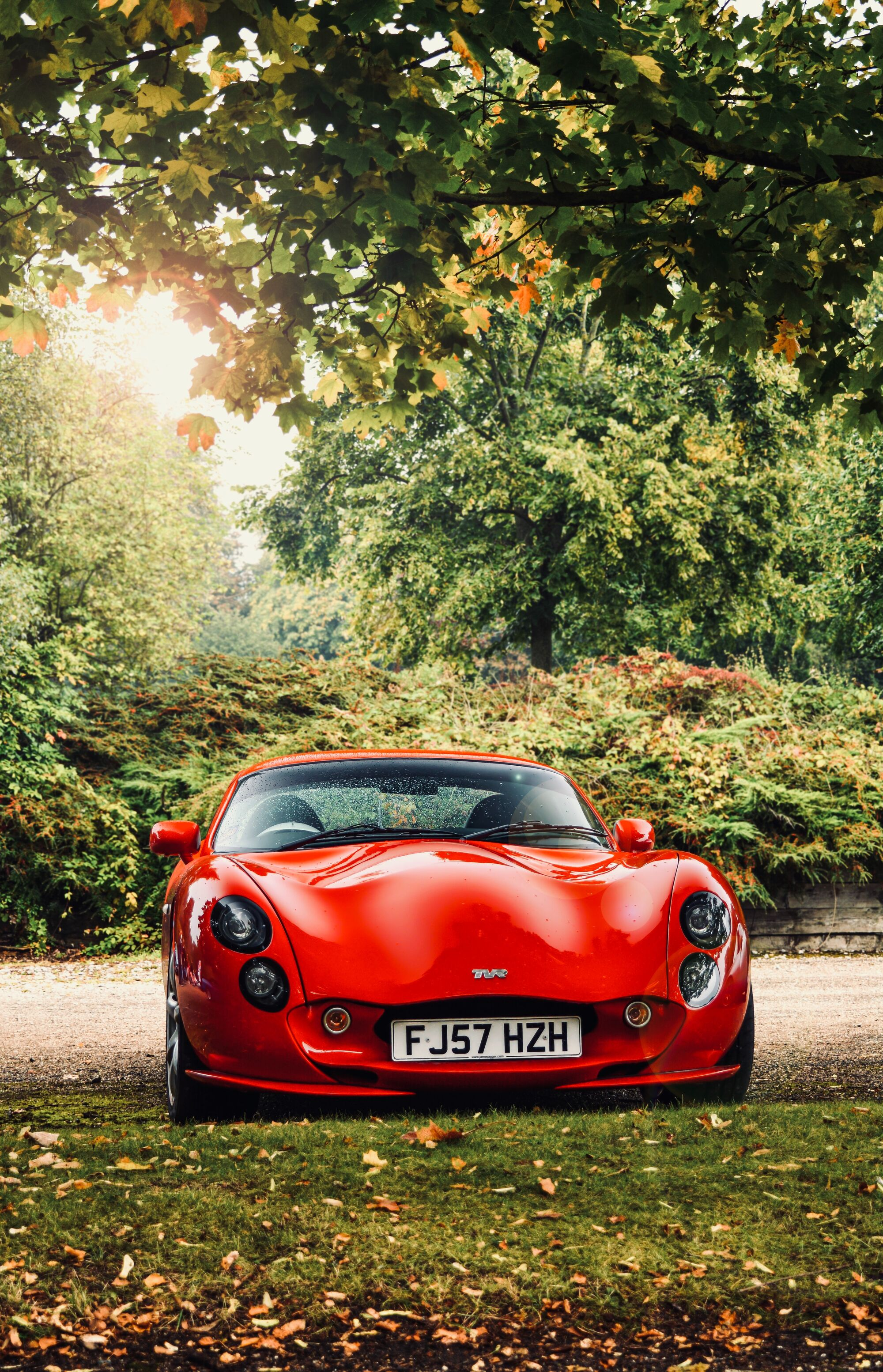 Tvr cover