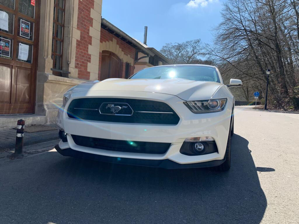 Ford Mustang 5.0 GT 50 Years Edition Auto.