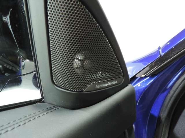 BMW M4 3.0 Competition DKG Drivelogic/ Garantie BMW 05/21 15/15