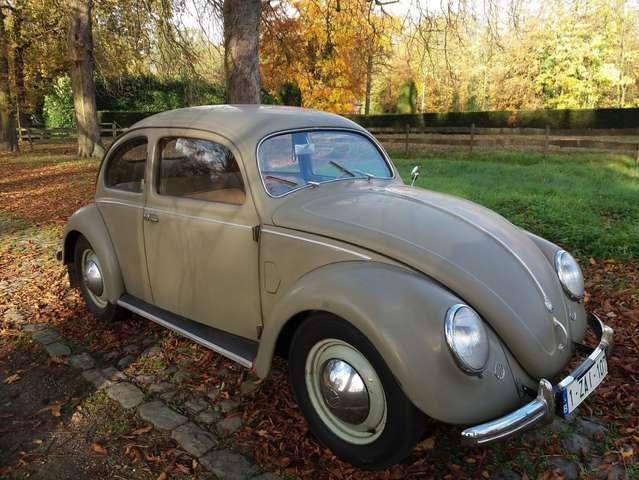 Volkswagen Kever Brilkever 1951 Type 11a - Originele staat 2/15
