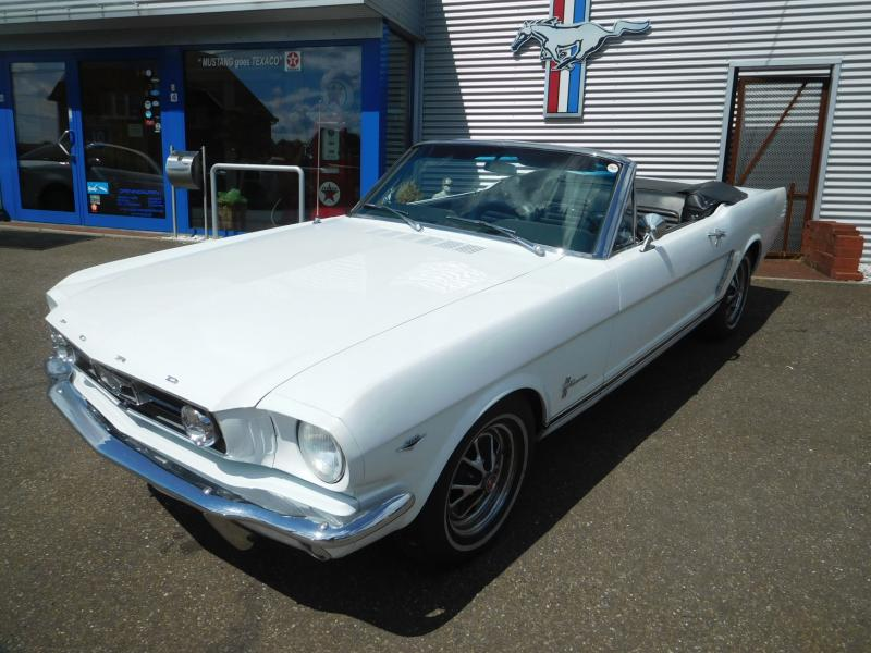 Ford Mustang bench 8/41