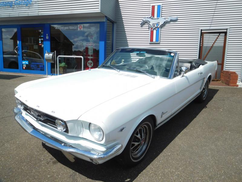 Ford Mustang bench 7/41