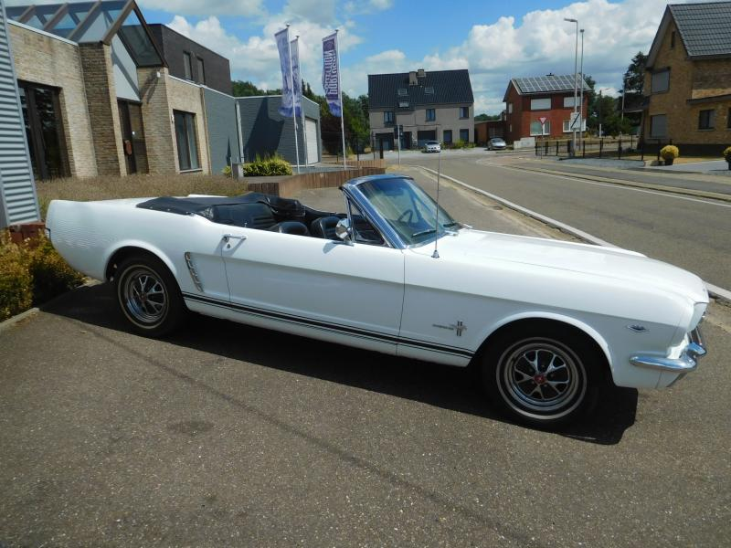 Ford Mustang bench 6/41