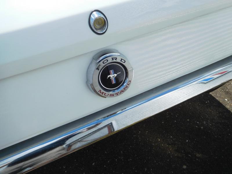 Ford Mustang bench 19/41
