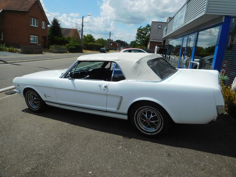 Ford Mustang bench 15/41