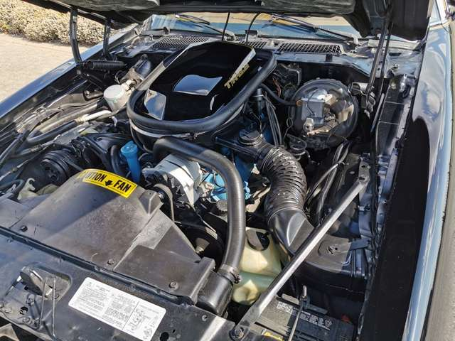 Pontiac Trans Am TRANS AM 6.6 V8 10 TH ANNISERSARY 14/15