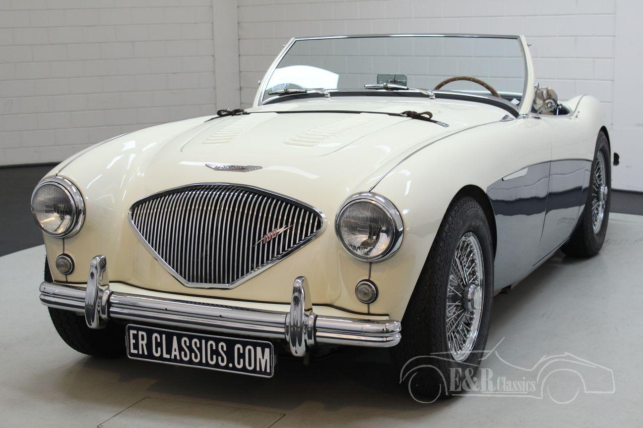 Austin Healey 100/4 BN2 1956 Le mans modification 7/30