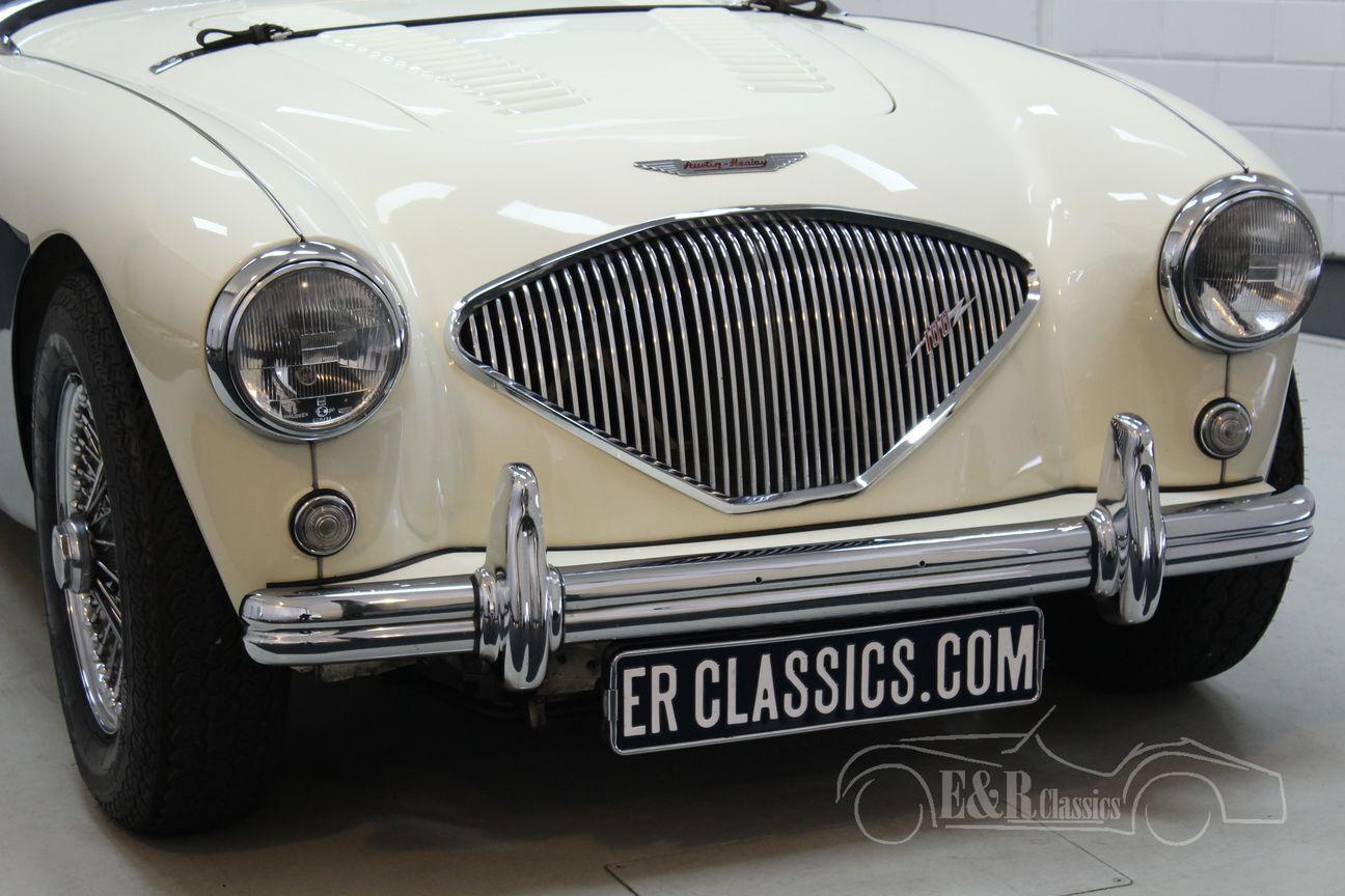 Austin Healey 100/4 BN2 1956 Le mans modification 5/30