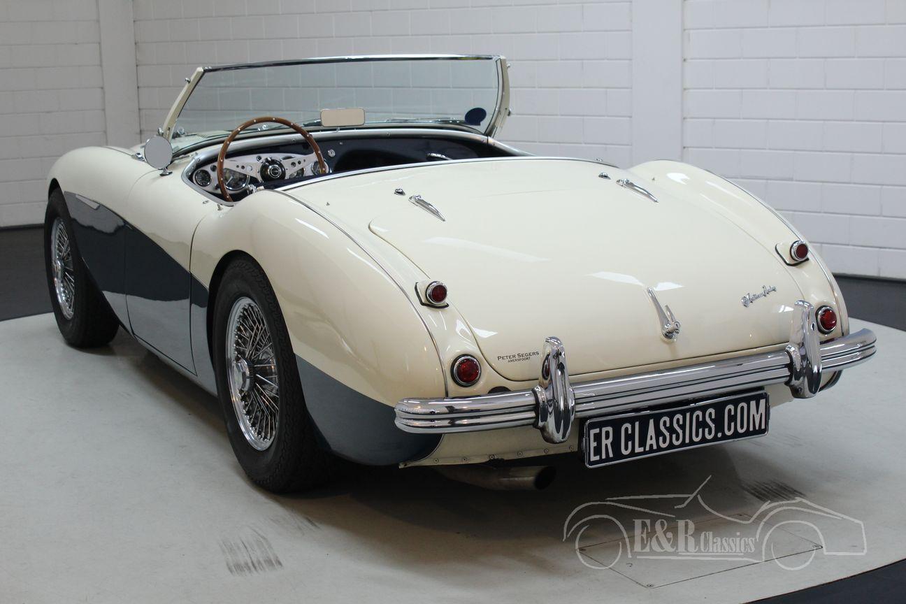 Austin Healey 100/4 BN2 1956 Le mans modification 10/30