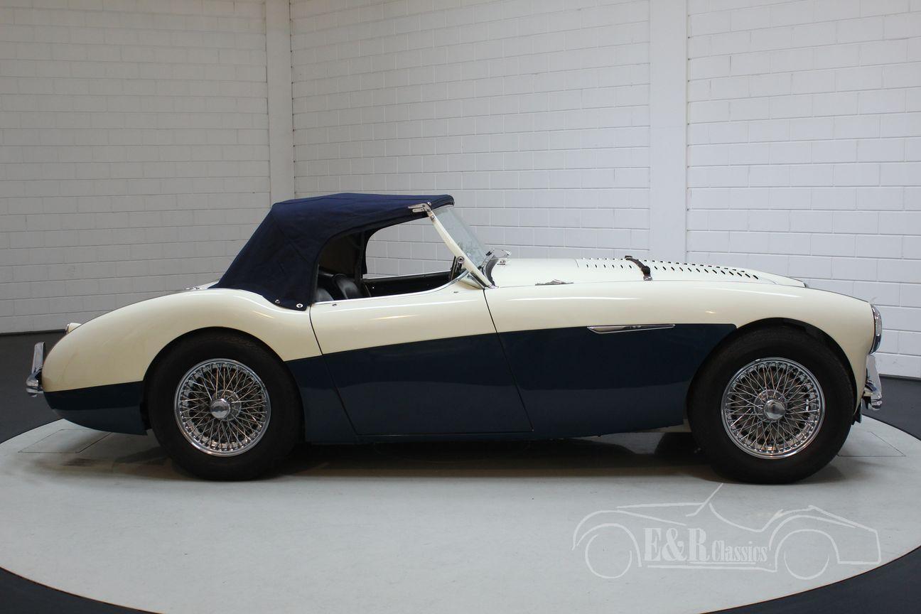 Austin Healey 100/4 BN2 1956 Le mans modification 27/30