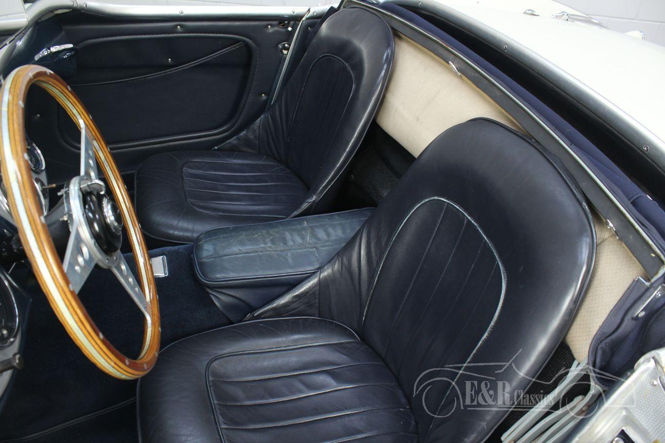 Austin Healey 100/4 BN2 1956 Le mans modification 19/30