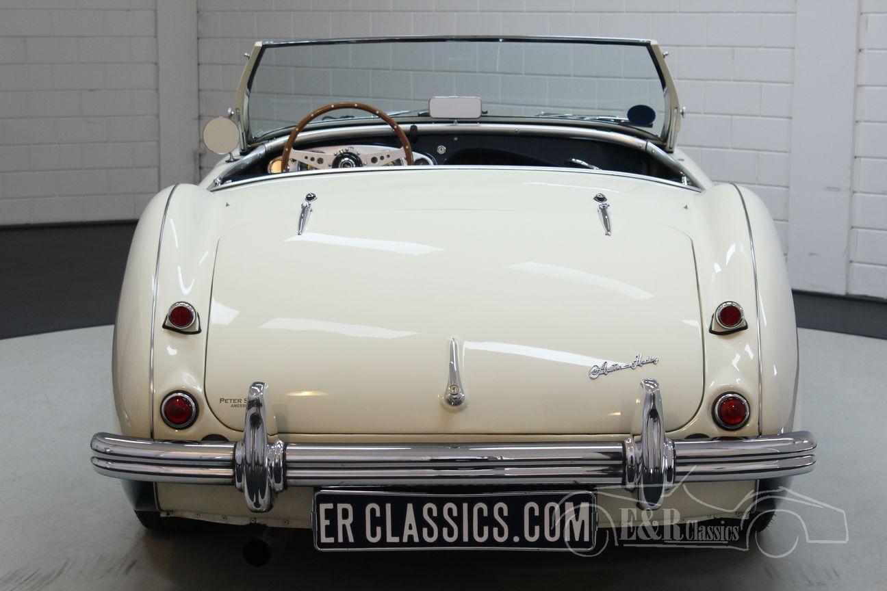 Austin Healey 100/4 BN2 1956 Le mans modification 11/30