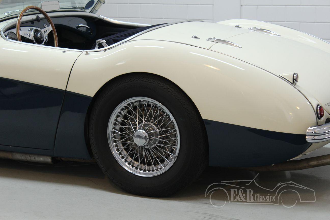 Austin Healey 100/4 BN2 1956 Le mans modification 9/30