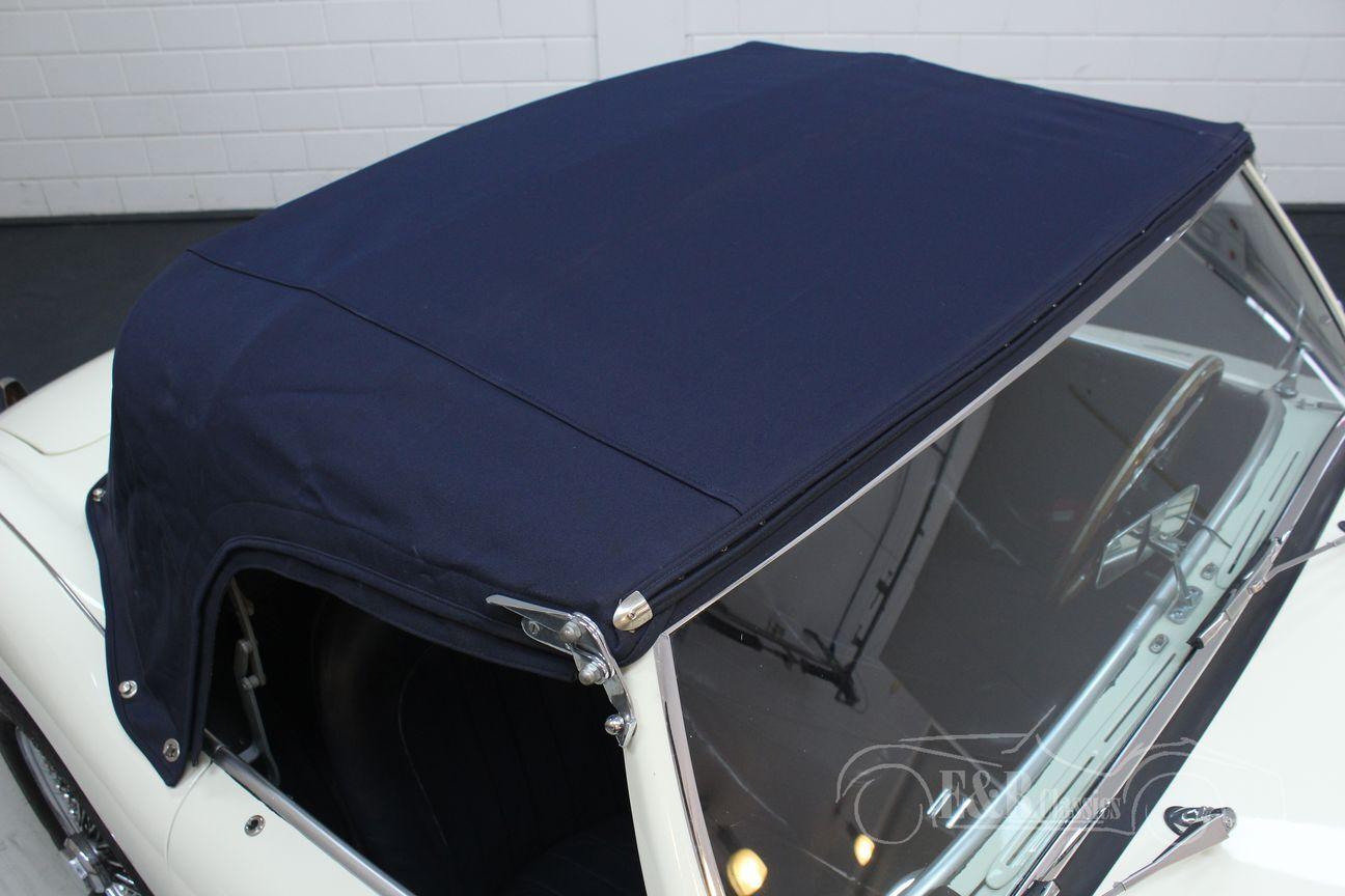 Austin Healey 100/4 BN2 1956 Le mans modification 28/30