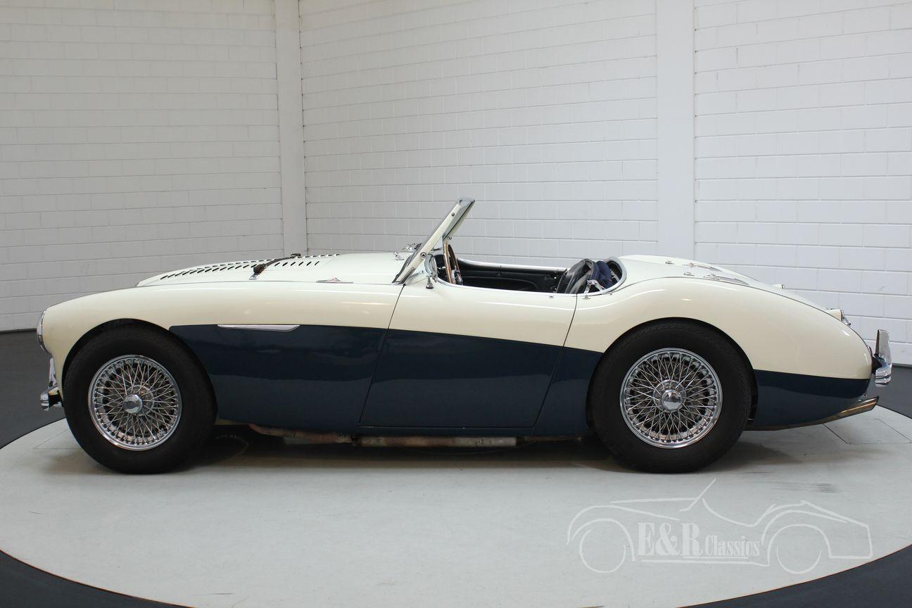 Austin Healey 100/4 BN2 1956 Le mans modification 8/30