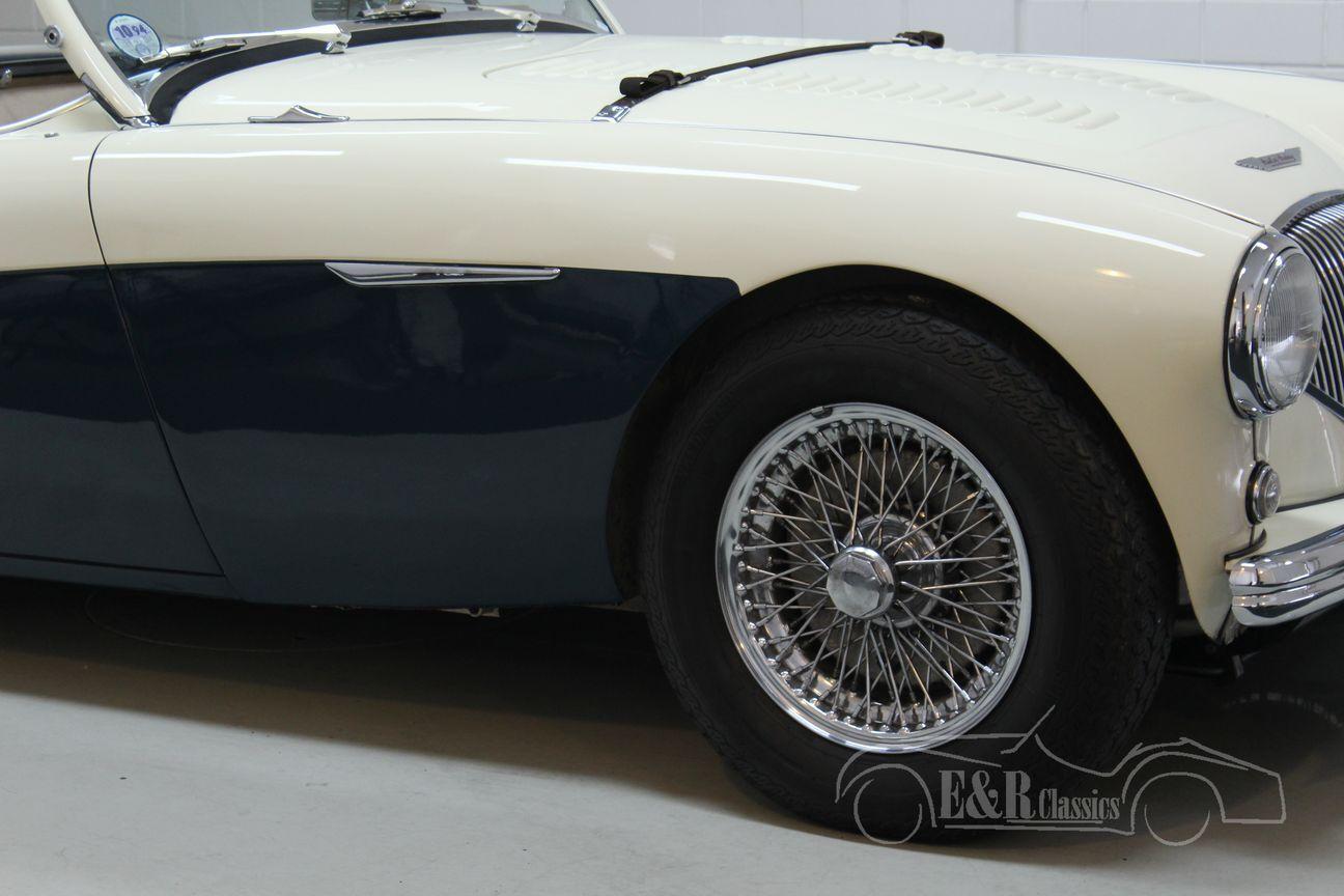 Austin Healey 100/4 BN2 1956 Le mans modification 14/30